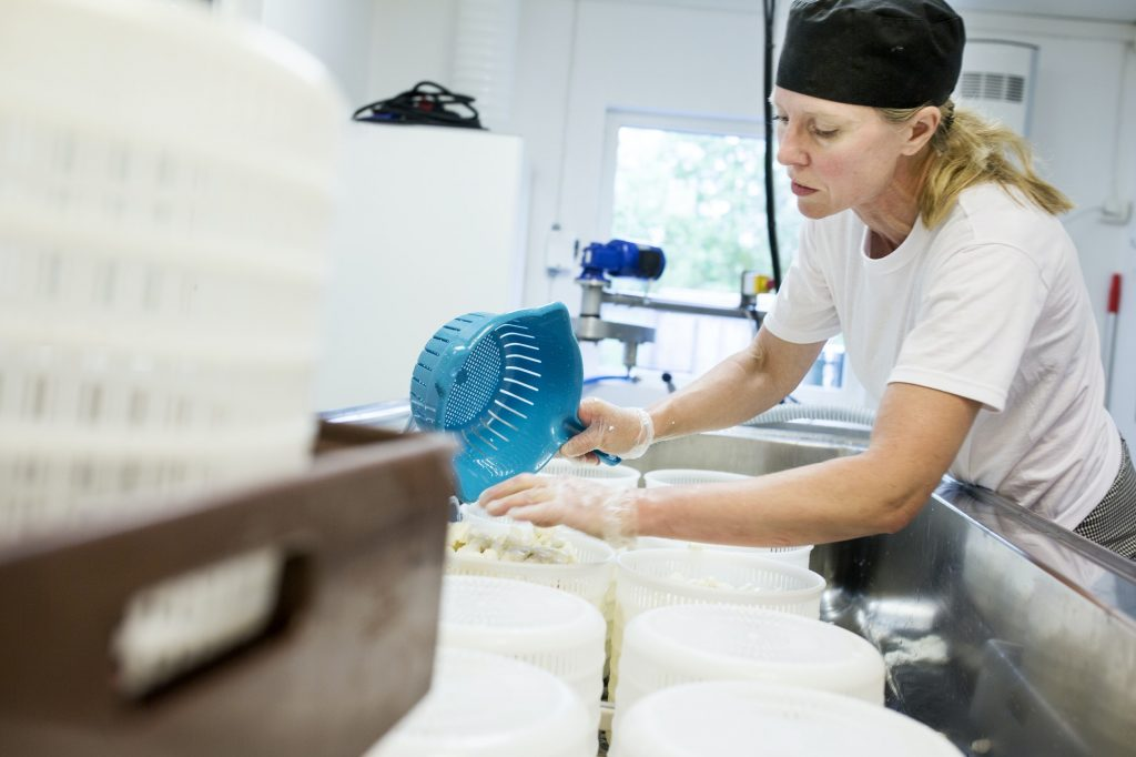 Woman preparing cottage cheese in commercial kitchen
